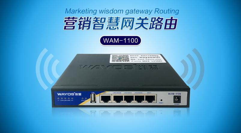 真•硬核 审计性价精选产品 WAM-1100