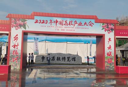 """维盟千兆助""""荔""""带货 看直播之下的中国荔枝产业大会"""